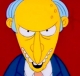 Mr.Burns73