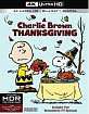 A Charlie Brown Thanksgiving 4K (4K UHD + Blu-ray + UV Copy) (US Import ohne dt. Ton) Blu-ray