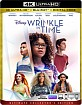 A Wrinkle in Time (2018) 4K (4K UHD + Blu-ray + UV Copy) (US Import ohne dt. Ton) Blu-ray
