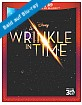 A Wrinkle in Time (2018) 3D (Blu-ray 3D + Blu-ray + DVD + UV Copy) (US Import ohne dt. Ton) Blu-ray