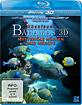 Abenteuer Bahamas 3D - Mysteriöse Höhlen und Wracks (Blu-ray 3D) Blu-ray