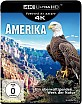 Amerika (2016) 4K (4K UHD) Blu-ray