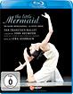 Anderson - Die kleine Meerjungfrau (Neumeier) Blu-ray
