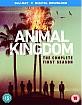 Animal Kingdom: The Complete First Season (Blu-ray + UV Copy) (UK Import ohne dt. Ton) Blu-ray