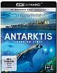 Antarktis - Leben am Limit 4K (4K UHD) Blu-ray