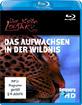 Austin Stevens - Der kleine Leopard: Das Aufwachsen in der Wildnis Blu-ray
