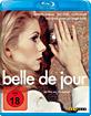 Belle de Jour - Schöne des Tages Blu-ray