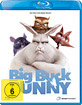Big Buck Bunny Blu-ray