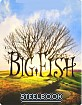 Big Fish: Storie di una Vita Incredibile - Steelbook (IT Import ohne dt. Ton) Blu-ray