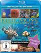 Blue Move - Unterwasserwelten in HD Blu-ray