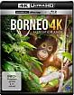 Borneo - Faszination Asien 4K (4K UHD + Blu-ray) Blu-ray