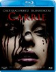 Carrie (2013) (CZ Import) Blu-ray