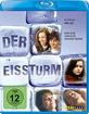 Der Eissturm Blu-ray