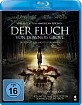 Der Fluch von Downers Grove Blu-ray