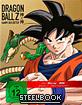 Dragon Ball Z: Kampf der Götter (Limited Steelbook Edition) Blu-ray