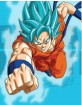 Dragon Ball Z: Resurrection F - Collectors Edition Digipak (Blu-ray + DVD) (Region A - US Import ohne dt. Ton) Blu-ray