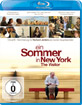 Ein Sommer in New York (2008) Blu-ray