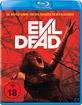 Evil Dead (2013) Blu-ray