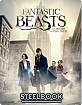 Fantastic Beasts and Where to Find them 3D - HMV Exclusive Limited Steelbook (Blu-ray 3D + Blu-ray ) (UK Import ohne dt. Ton) Blu-ray