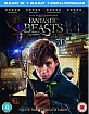 Fantastic Beasts and Where to Find them 3D (Blu-ray 3D + Blu-ray + UV Copy) (UK Import ohne dt. Ton) Blu-ray
