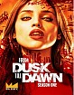 From Dusk Till Dawn: The Series - The Complete First Season (CA Import ohne dt. Ton) Blu-ray
