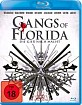 Gangs of Florida Blu-ray