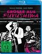 Grüsse aus Fukushima (Majestic Collection) Blu-ray