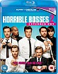 Horrible Bosses 2 - Extended Cut (Blu-ray + UV Copy) (UK Import ohne dt. Ton) Blu-ray