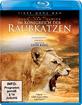 Im Königreich der Raubkatzen - Cats of Prey Blu-ray