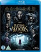 Into the Woods (2014) (UK Import ohne dt. Ton) Blu-ray