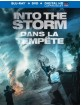 Into the Storm (2014) (Blu-ray + DVD + UV Copy) (CA Import ohne dt. Ton) Blu-ray