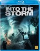 Into the Storm (2014) (SE Import) Blu-ray