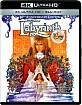 Labyrinth 30th Anniversary Edition 4K (4K UHD + Blu-ray + UV Copy) (UK Import ohne dt. Ton) Blu-ray