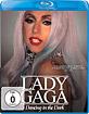 Lady Gaga - Dancing in the Dark Blu-ray