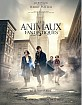 Les Animaux Fantastiques 3D (Blu-ray 3D + Blu-ray) (FR Import ohne dt. Ton) Blu-ray