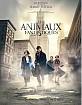 Les Animaux Fantastiques (FR Import ohne dt. Ton) Blu-ray
