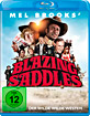 Mel Brooks' - Blazing Saddles: ...