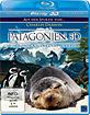 Patagonien 3D - Auf den Spuren von Charles Darwin: Von Buenos Aires bis Cabo dos Bahias (Blu-ray 3D) Blu-ray