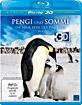 Pengi und Sommi - Die neue Reise der Pinguine 3D (Blu-ray 3D) Blu-ray