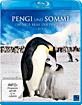 Pengi und Sommi - Die neue Reise der Pinguine Blu-ray
