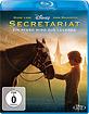 Secretariat - Ein Pferd wird zur Legende Blu-ray
