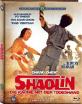 Shaolin - Die Rache mit d