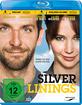 Silver Linings Blu-ray