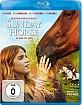 Sunday Horse - Ein Bund fürs Leben Blu-ray