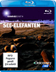 Sunrise Earth - See-Elefanten Blu-ray