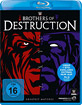 WWE Brothers of Destruction Blu-ray