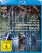 Wagner - Der Ring des Nibelungen - Götterdämmerung (Padrissa) Blu-ray