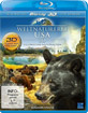 Weltnaturerbe USA 3D - Yellowstone Nationalpark (Blu-ray 3D) Blu-ray