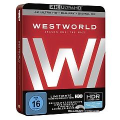 Westworld - Staffel eins: Das Labyrinth 4K (3 4K UHD + 3 Blu-ray + UV Copy) Blu-ray