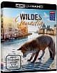 Wildes Venedig 4K (4K UHD) Blu-ray